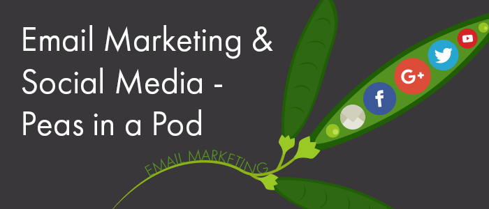 Why Email Marketing & Social Media Are Like Peas in a Pod